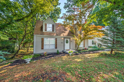 Knoxville Single Family Home For Sale: 4842 Jenkins Rd