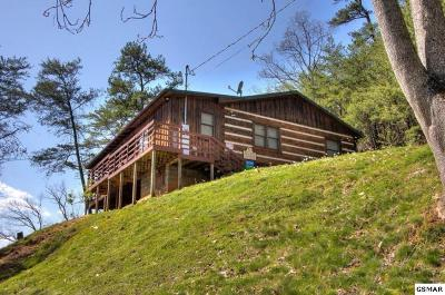 Sevierville Single Family Home For Sale: 2460 Hawkeye View