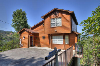 Gatlinburg Single Family Home For Sale: 943 Crooked Ridge Rd