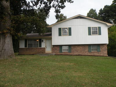 Knoxville Single Family Home For Sale: 2421 Chukar Rd