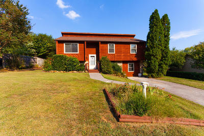 Knoxville Single Family Home For Sale: 828 Bent Tree Rd