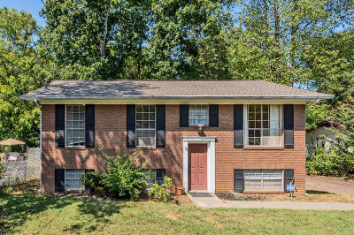 Knoxville Single Family Home For Sale: 6309 Mill Creek Lane