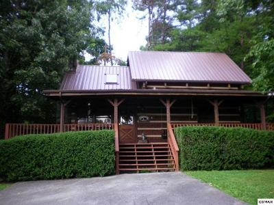 Sevierville Single Family Home For Sale: 1223 Ski View Lane