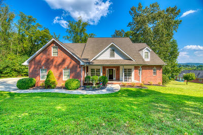 Anderson County Single Family Home For Sale: 226 Alpine Drive