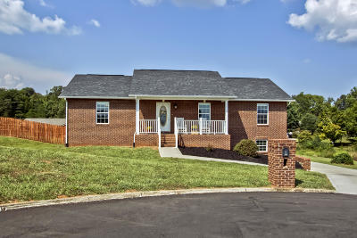 Seymour Single Family Home For Sale: 575 Hills Gate Circle