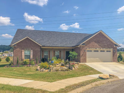 Knoxville Single Family Home For Sale: 556 Greystoke Lane