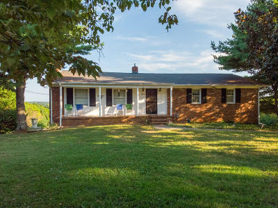 Knoxville Single Family Home For Sale: 3914 Buffat Mill Rd