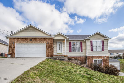 Maynardville Single Family Home For Sale: 258 Covenant Lane