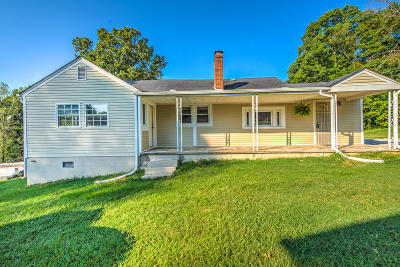 Knoxville Single Family Home For Sale: 7028 Terry Drive