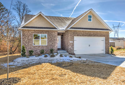Maryville Single Family Home For Sale: 2402 Utah Beach Drive