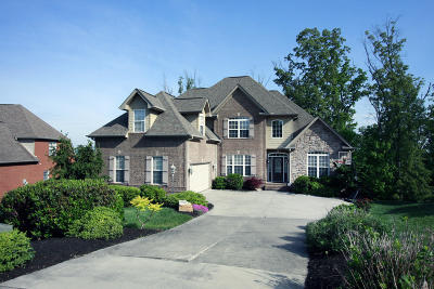 Knoxville Single Family Home For Sale: 10311 Noras Path Lane