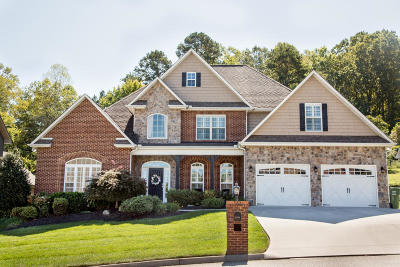 Knoxville Single Family Home For Sale: 1476 Branch Field Lane
