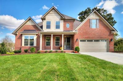 Knoxville Single Family Home For Sale: 12642 Brass Lantern Lane