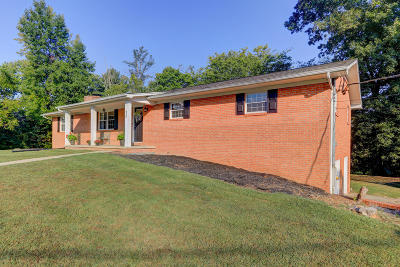 Knoxville Single Family Home For Sale: 6565 Vestine Drive