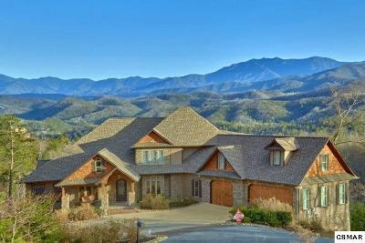 Sevierville Single Family Home For Sale: 3270 Laurel Cove Tr