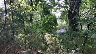 Knoxville TN Residential Lots & Land For Sale: $24,900
