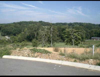 Knoxville TN Residential Lots & Land For Sale: $29,900
