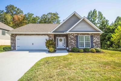 Knoxville Single Family Home For Sale: 6928 Harvest Grove Lane