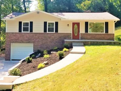 Knoxville Single Family Home For Sale: 401 Seminole Rd