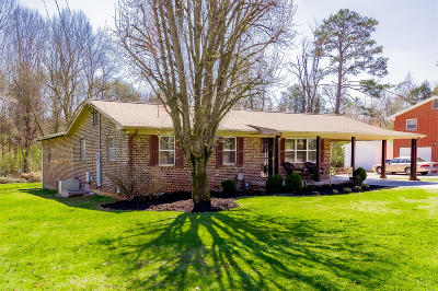 Knoxville Single Family Home For Sale: 1036 Lancewood Drive
