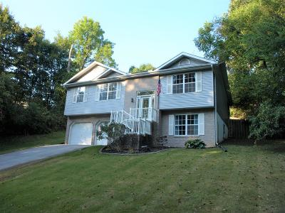 Knoxville Single Family Home For Sale: 5821 Fountain Rd