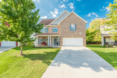 Knoxville Single Family Home For Sale: 6953 Wyndham Pointe Lane