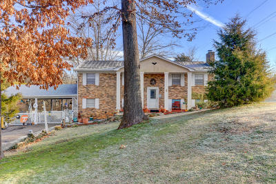 Knoxville Single Family Home For Sale: 428 Chisholm Tr