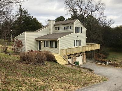 Knoxville Single Family Home For Sale: 316 Island View Lane