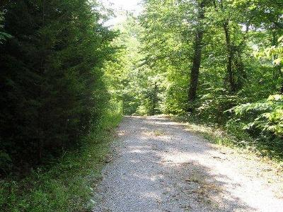 Campbell County Residential Lots & Land For Sale: 148 Marina Lane