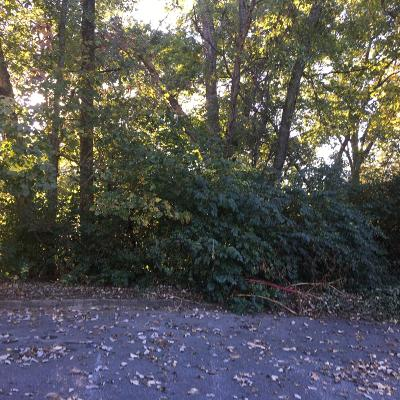 Knoxville Residential Lots & Land For Sale: 801 Fairway Oaks Lane #2