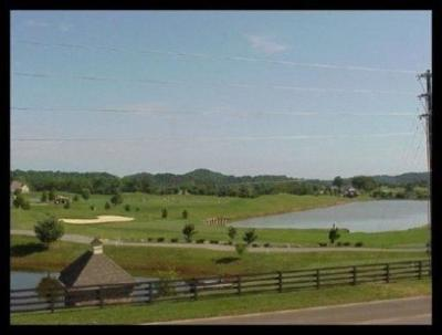 Blount County, Loudon County, Monroe County Residential Lots & Land For Sale: L453 Rarity Bay Pkwy