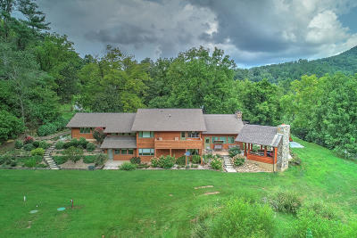 Sevierville Single Family Home For Sale: 4242 Pearl Valley Rd