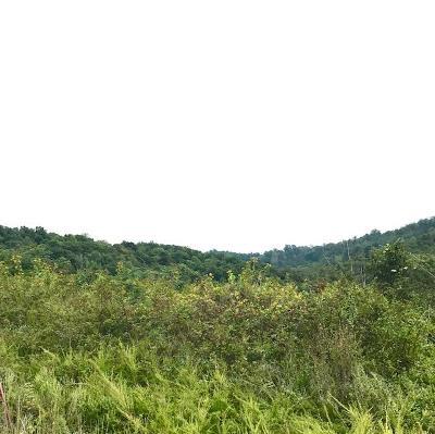 Hidden Springs, Hidden Springs Unit 1 Residential Lots & Land For Sale: Pinnacle Lane