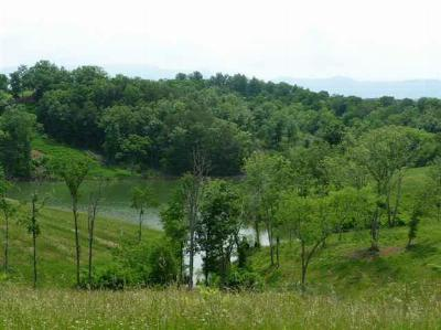 Residential Lots & Land For Sale: Lot 23- Ferry Hill Rd.