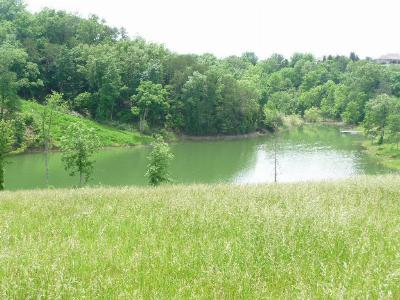 Residential Lots & Land For Sale: Lot 26 Mountain Lake Drive