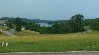 Blount County, Loudon County, Monroe County Residential Lots & Land For Sale: 150 Hummingbird L-1056