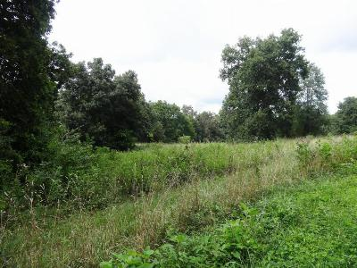 Residential Lots & Land Sold: Burchfield Road