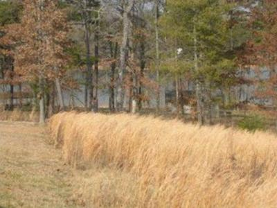 Meigs County, Rhea County, Roane County Residential Lots & Land For Sale: Sandy Bottoms Lane