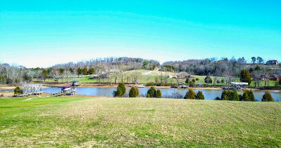 Meigs County, Rhea County, Roane County Residential Lots & Land For Sale: Pointe Vista Drive