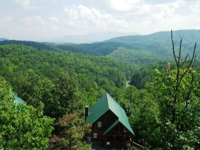 Pigeon Forge Single Family Home For Sale: 4473 Forest Vista Way