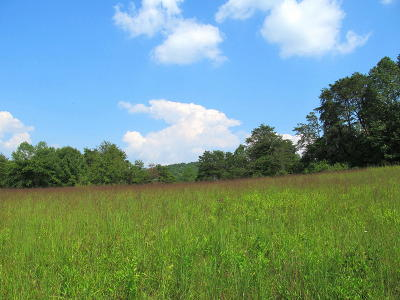 Andersonville Residential Lots & Land For Sale: Highway 61