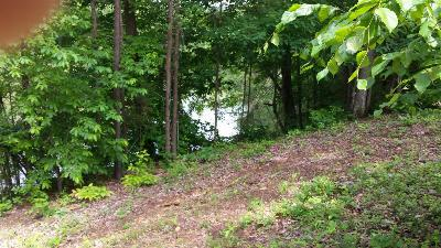 Meigs County, Rhea County, Roane County Residential Lots & Land For Sale: Lot 60 Blue Heron Point