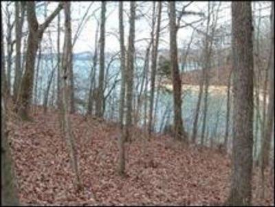 Meigs County, Rhea County, Roane County Residential Lots & Land For Sale: 338 Phillips Drive