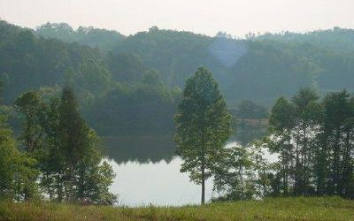Loudon County, Blount County, Monroe County Residential Lots & Land For Sale: 117 Copper Still Way L16 Drive
