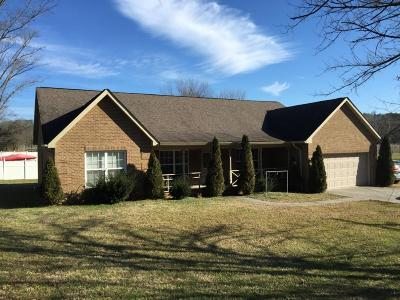 Blount County, Loudon County, Monroe County Single Family Home For Sale: 2304 Effler Rd
