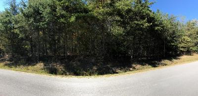 Residential Lots & Land For Sale: Lot 108 Chimney Rock Rd