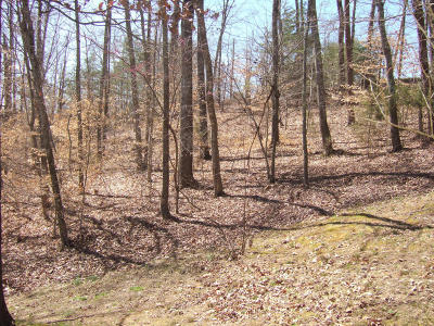 Sharps Chapel TN Residential Lots & Land Sold: $117,000