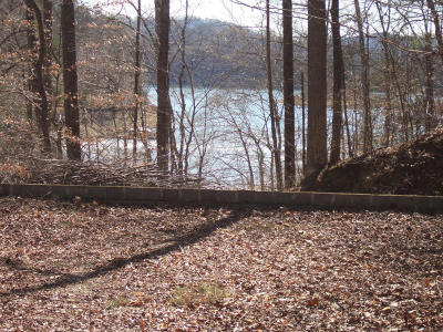 Union County Residential Lots & Land For Sale: Lot 107 Blue Diamond