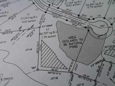 Residential Lots & Land For Sale: Lot 12 Catherine Crisp Way Way
