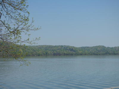 Meigs County, Rhea County, Roane County Residential Lots & Land For Sale: Lot 42 Blue Water Tr